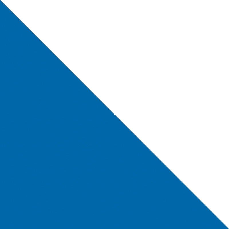 Zürich (ZH)