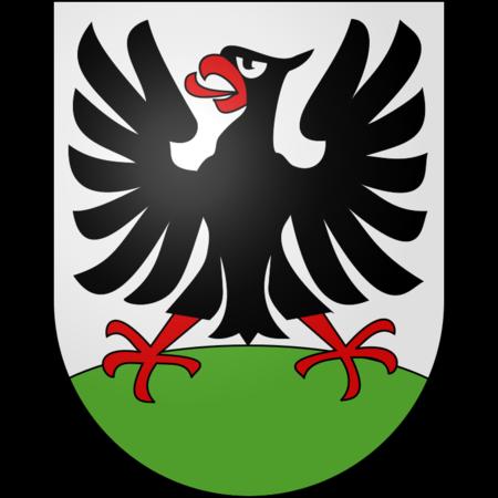 Gemeinde Adelboden Supralon 110g/m2