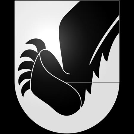 Gemeinde Aeschi bei Spiez Titan 160g/m2